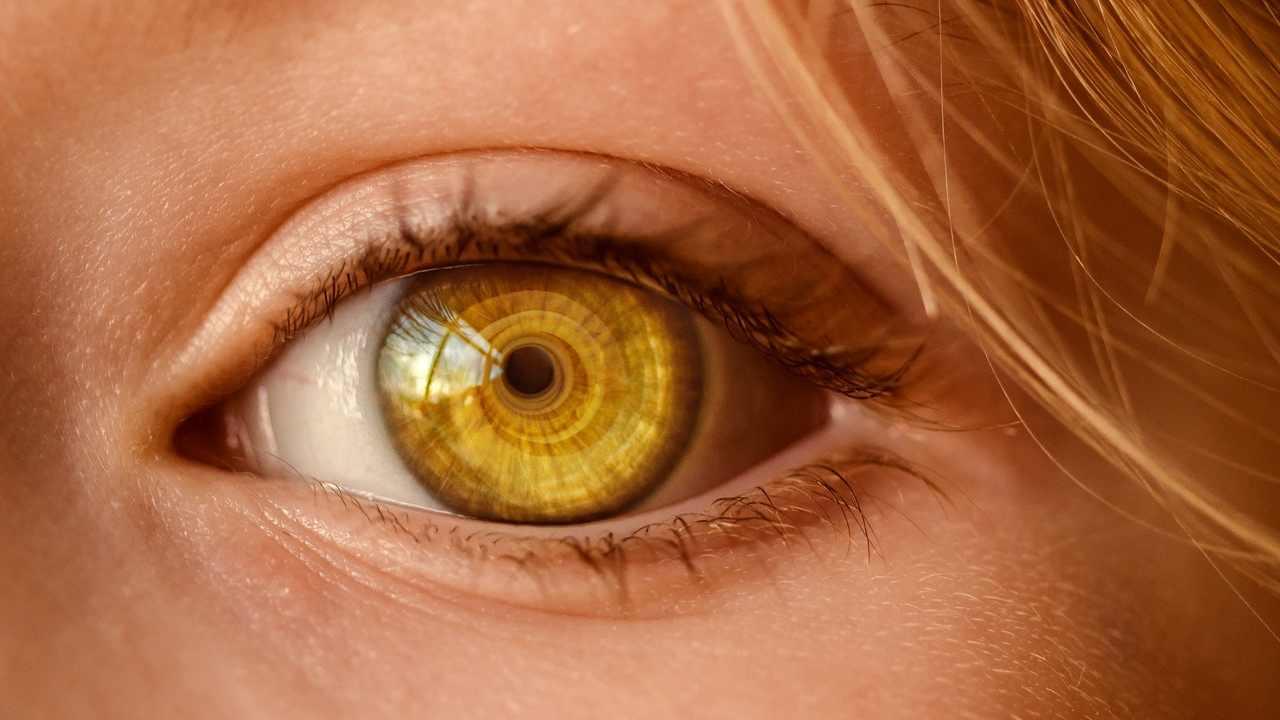 Identificazione tramite iride