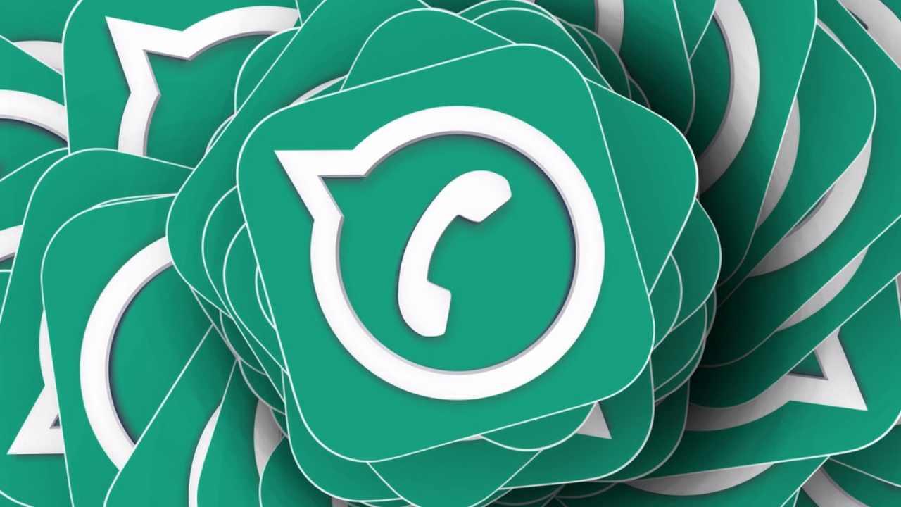 Verde scuro WhatsApp