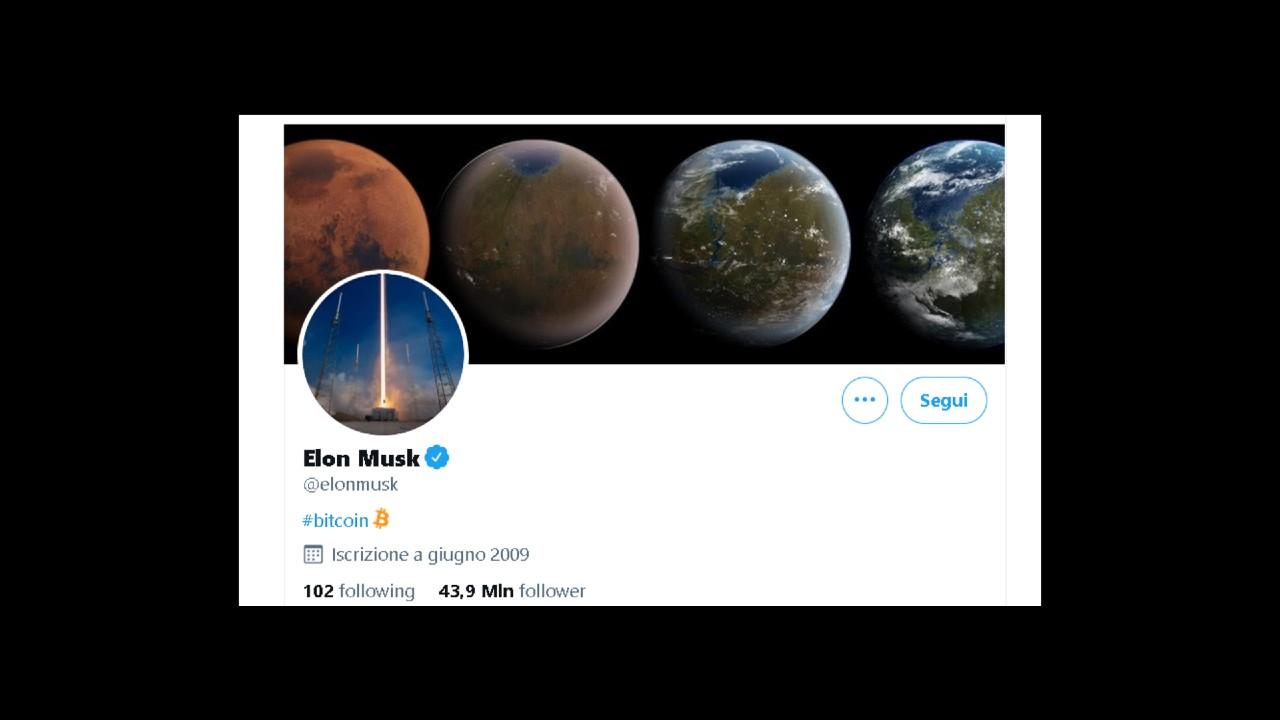 Elon Musk twitter bitcoin