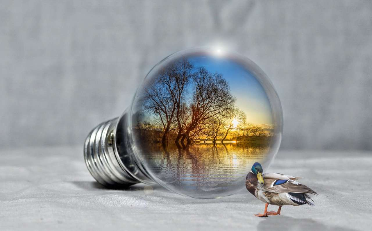 Energia rinnovabile pannelli solari trasparenti