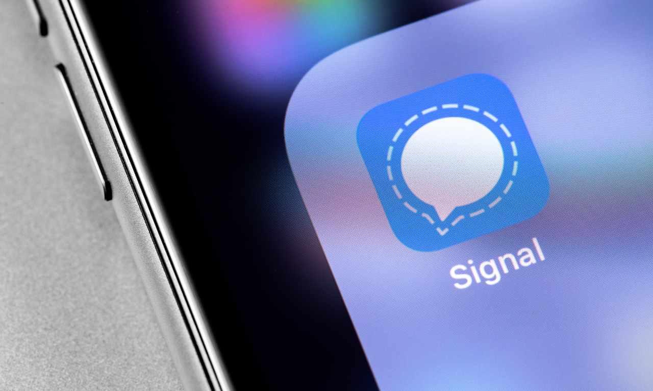 Signal (Adobe Stock)