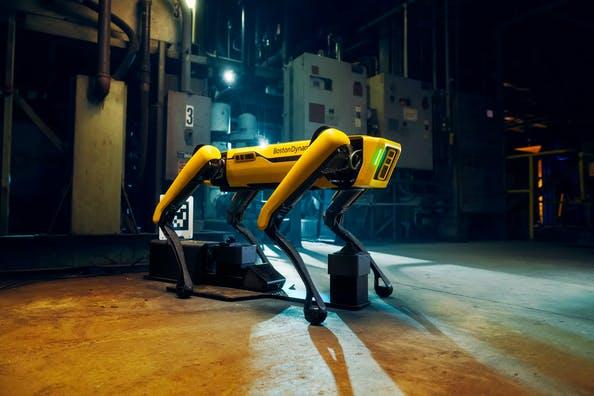 Boston Dynamics cane robot braccio