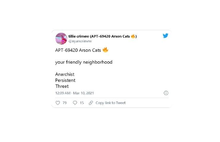 Hacker Tesla, Arson Cats small