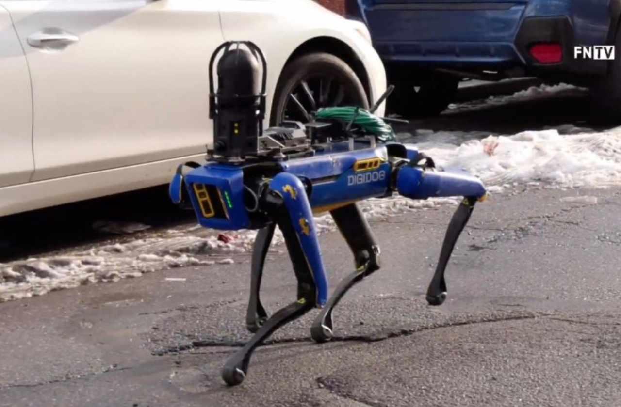 Cane robot (Foto Fntv)