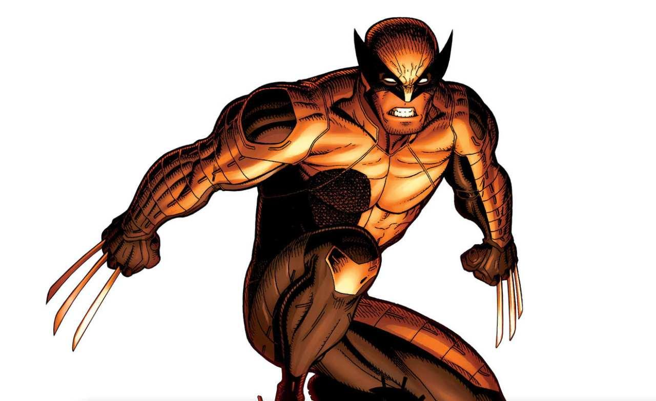 Google Wolverine