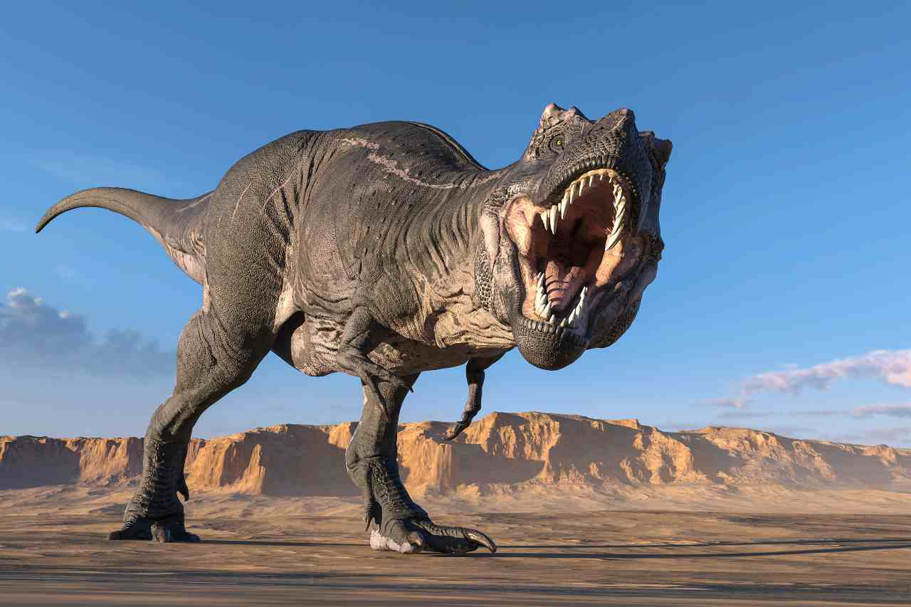 Tirannosaurus Rex (Adobe Stock)