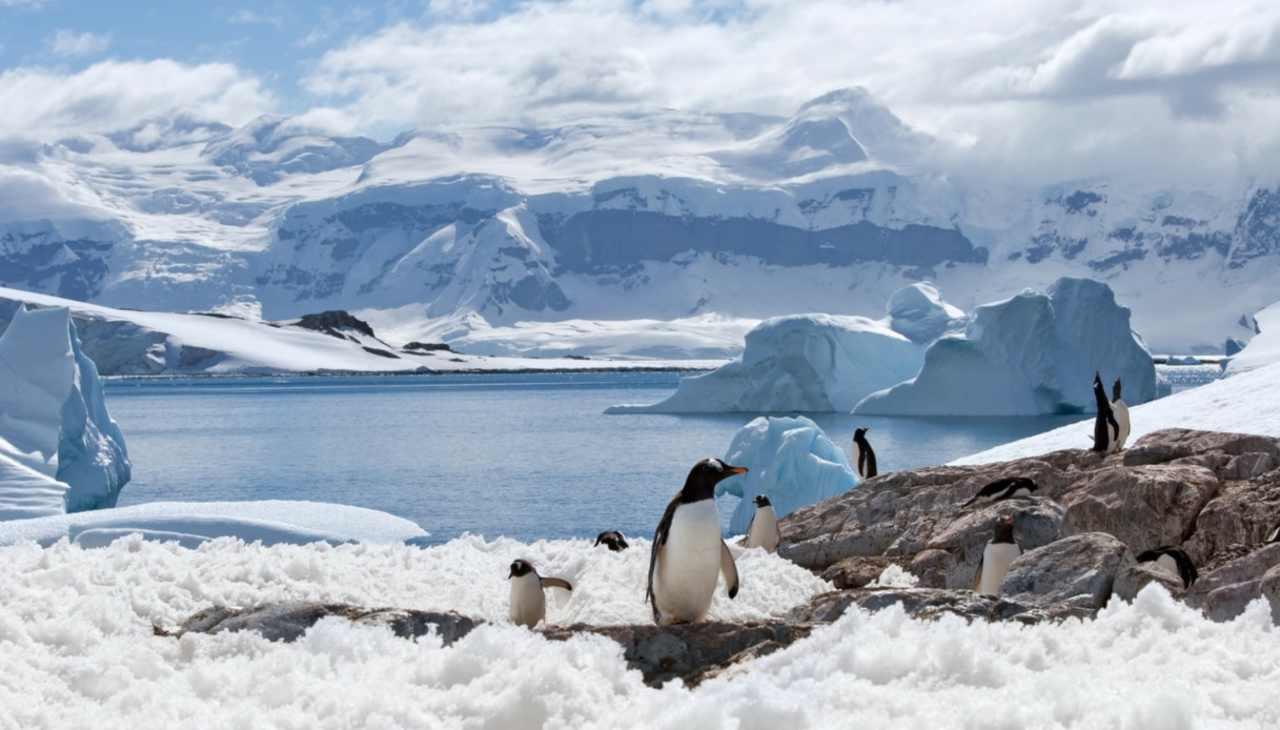 Scioglimento ghiacciai Antartide (Foto Siviaggia)