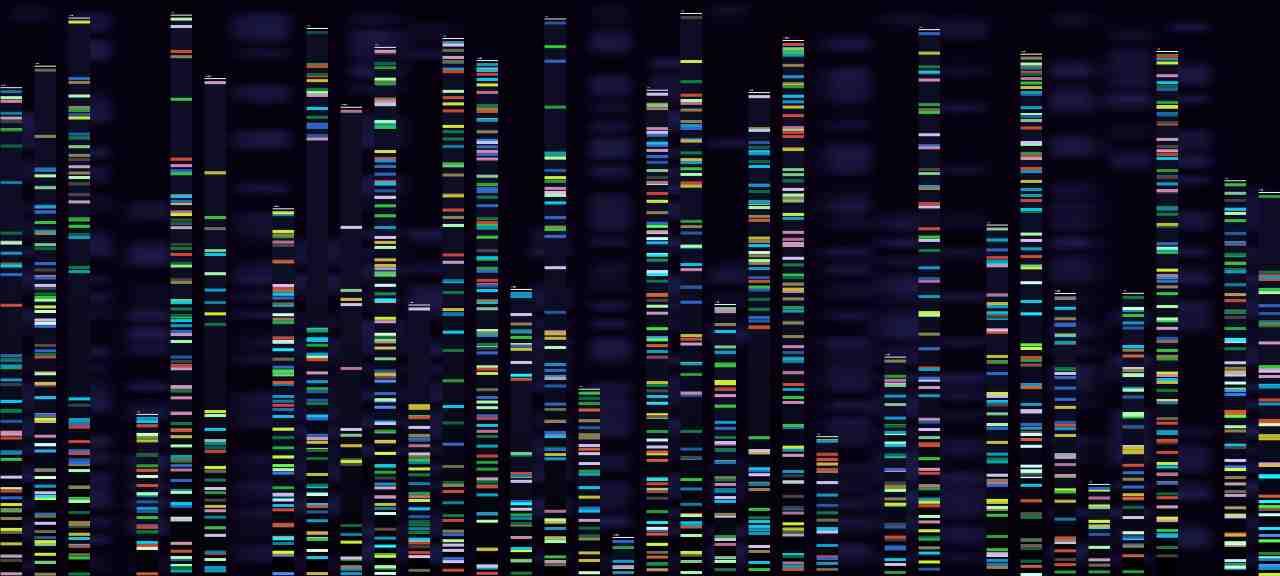 L'IA ha decodificato il proteoma umano (foto Adobestock)