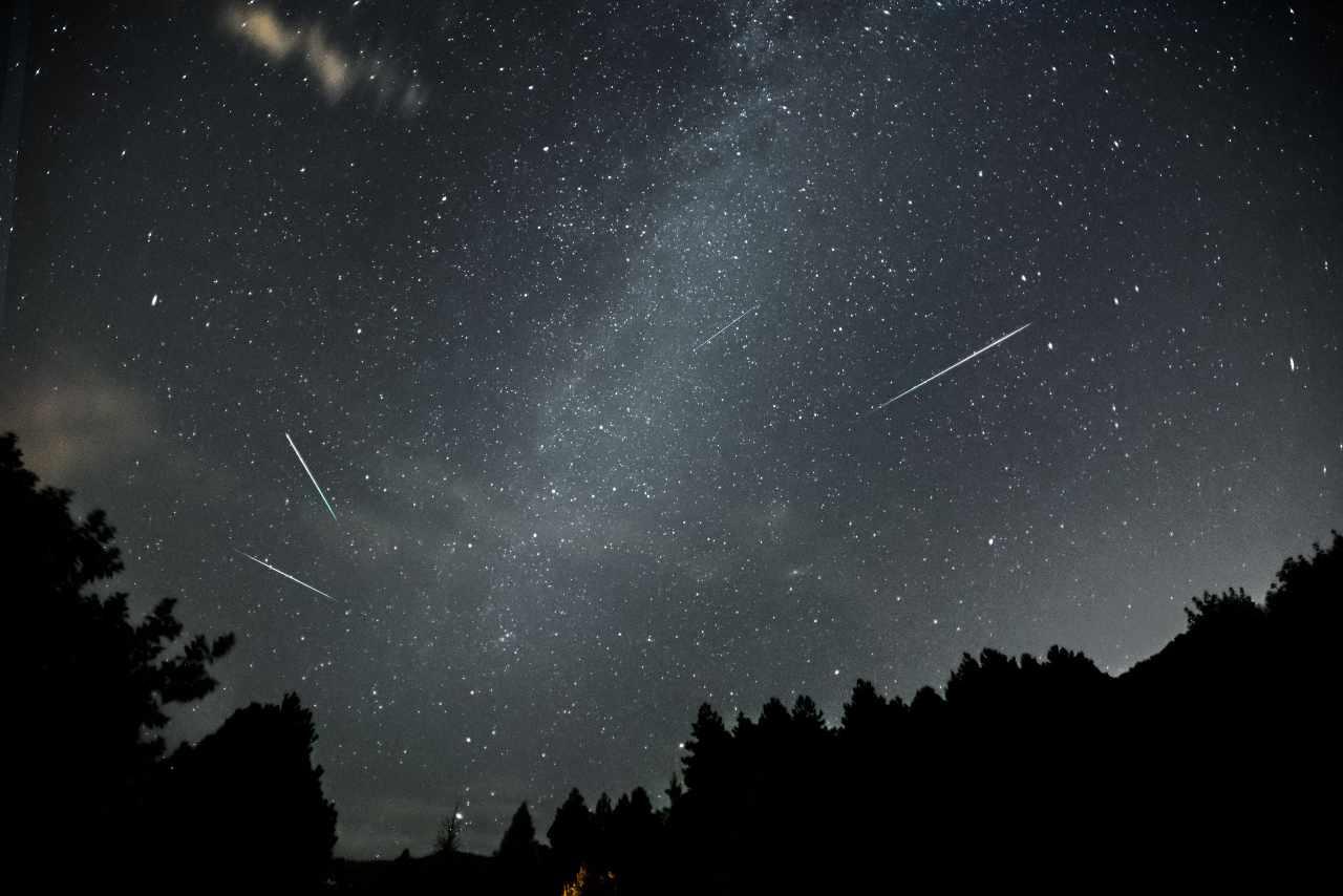 Perseidi, le stelle cadenti estive (Adobe Stock)