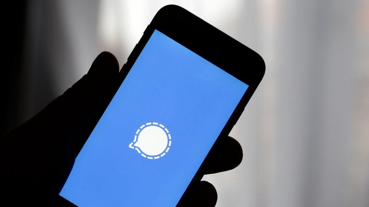 Signal e la questione privacy (Foto Grazia)