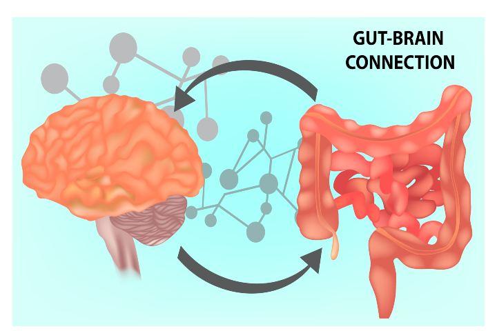Cervello intestino