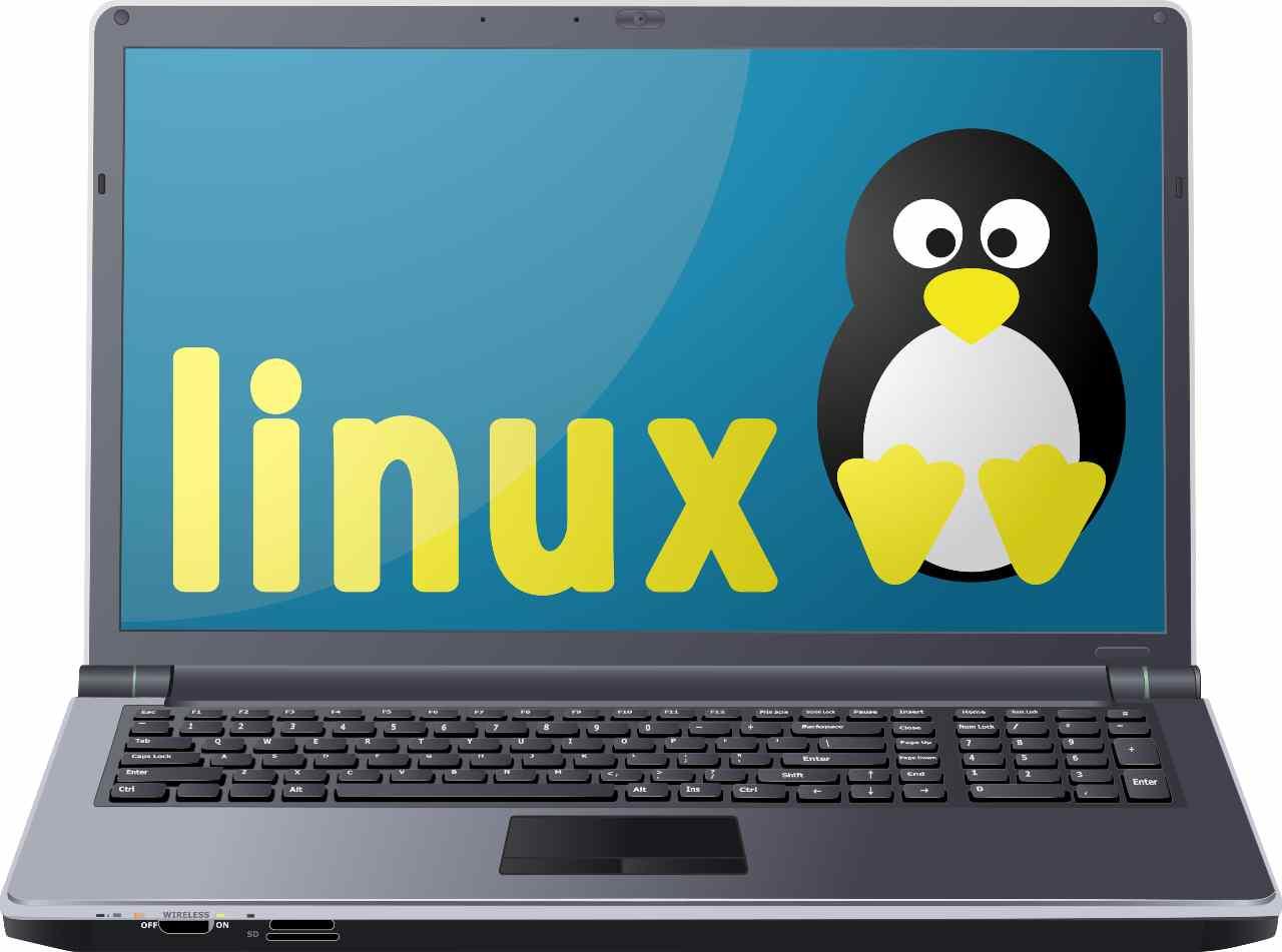 Linux, sono in molti a pensare che sia meglio di Microsoft (Adobe Stock)