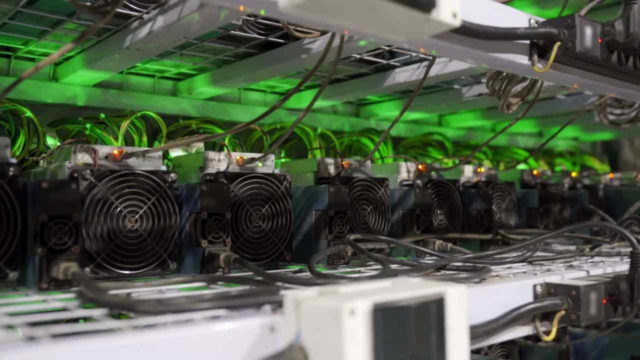Miner di Bitcoin uniti contro l'inquinamento (Foto Stormgain)
