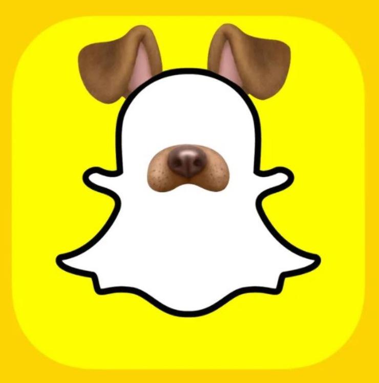 Snapchat riconoscerà cani e vini (Foto Nymag)