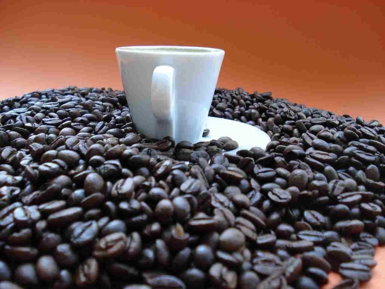 Arriva il caffè sintetico buono come quello vero (Adobe Stock)