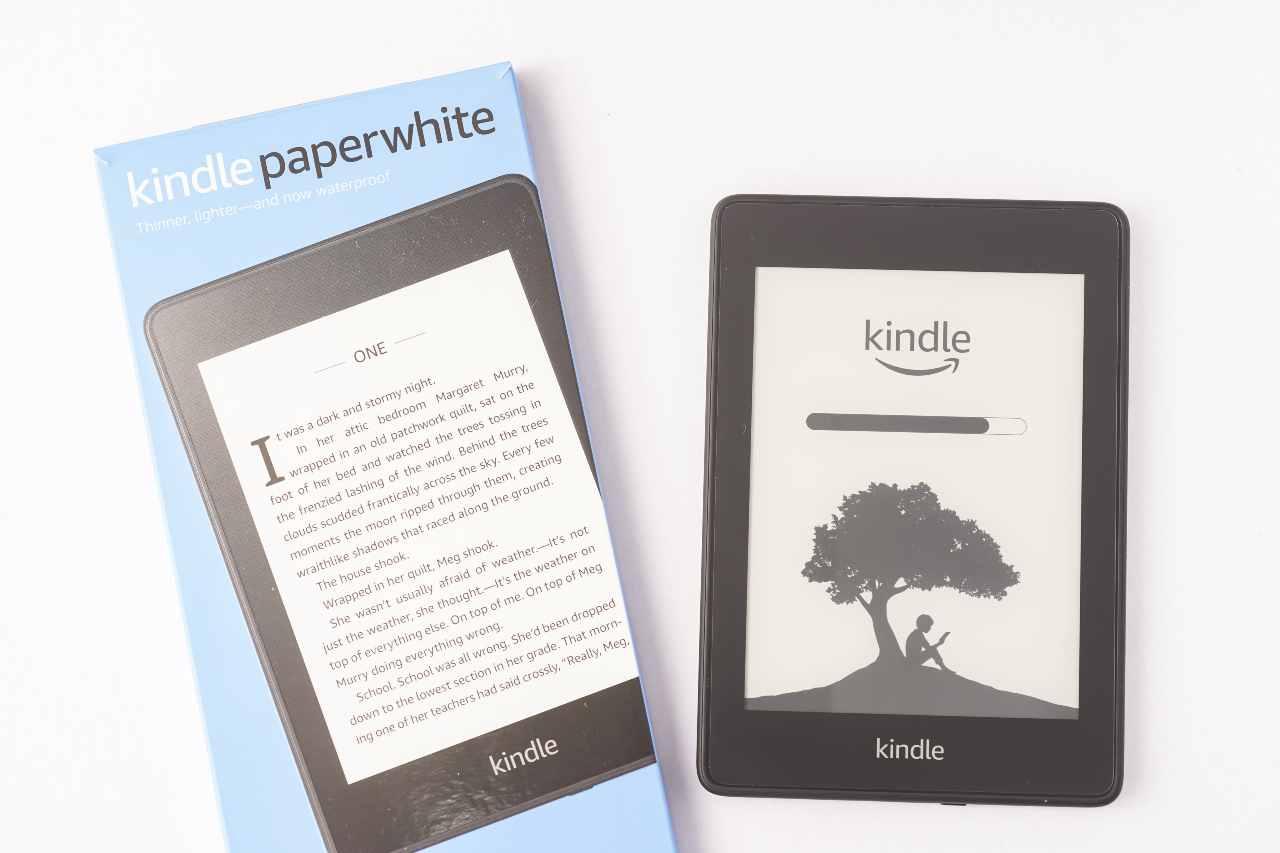 lettori di libri elettronici nati per il mercato statunitense, ma dal 2009 disponibili in tutto il mondo (Adobe Stock)