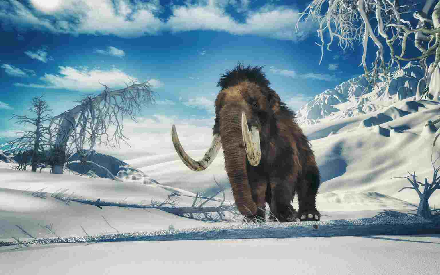 Il mammut lanoso, estinto milioni di anni fa (Getty Images)