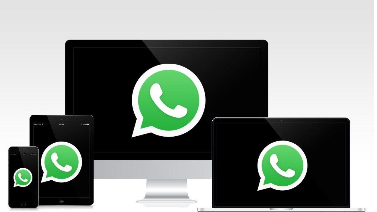 WhatsApp, nuova funzione (Foto Optimagazine)