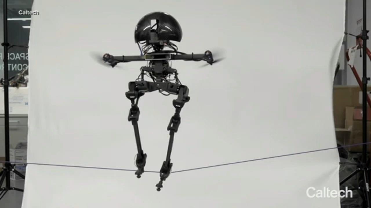 Il robot Volante Leonardo della Caltech